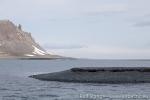 180123c_yankee-harbour_009