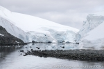 180131a_melchior-islands_143