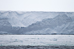 d6_ross-iceshelf_25jan15_196