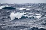 f3_southern-ocean_05feb15_005