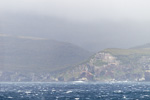 f5_campbell-island_07feb15_050