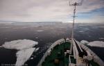 a6_Antarctic-Sound_06Dez09-08