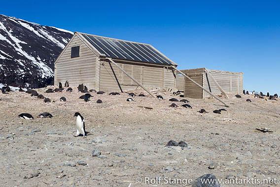Borchgrevink's hut, Cape Adare